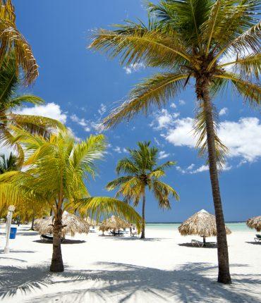 Buceá en las bellas playas en Boca Chica 7 noches con todo incluido